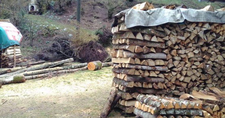 Holz, Holz, Holz …